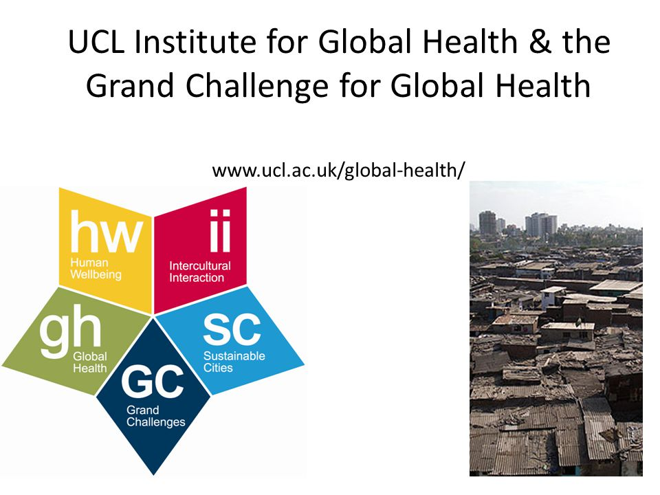 UCL Institute for Global Health & the Grand Challenge for Global Health www.ucl.ac.uk/global-health/