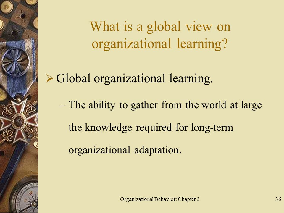 Organizational Behavior: Chapter 336 What is a global view on organizational learning.