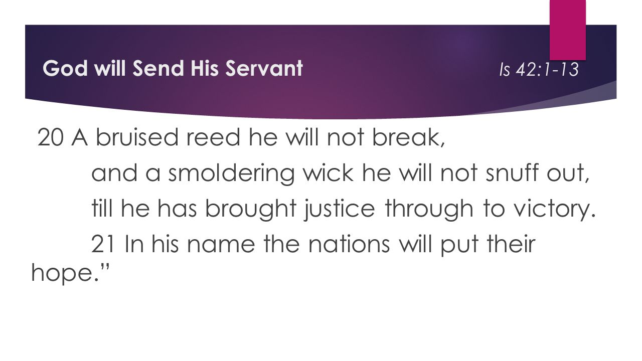 God will Send His Servant Is 42:1-13 20 A bruised reed he will not break, and a smoldering wick he will not snuff out, till he has brought justice through to victory.