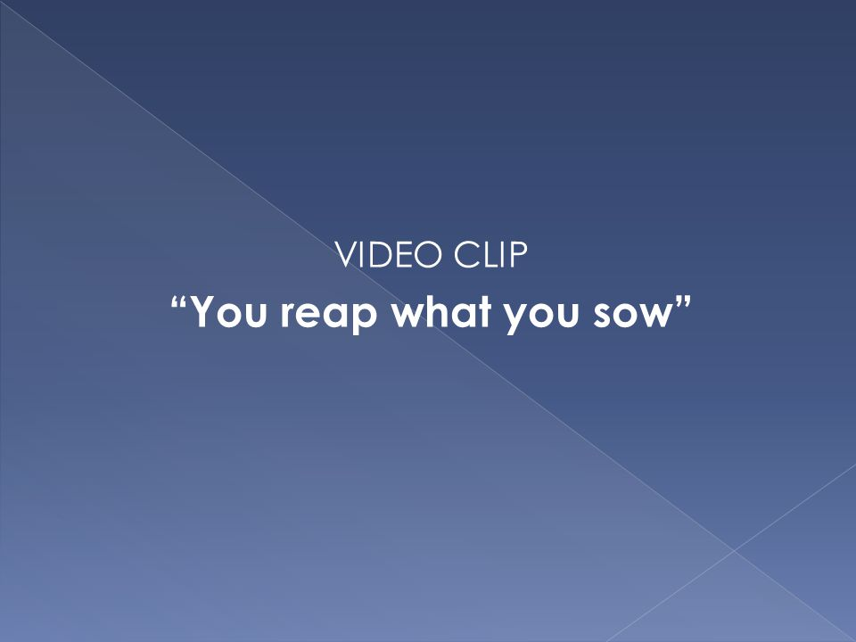 VIDEO CLIP You reap what you sow