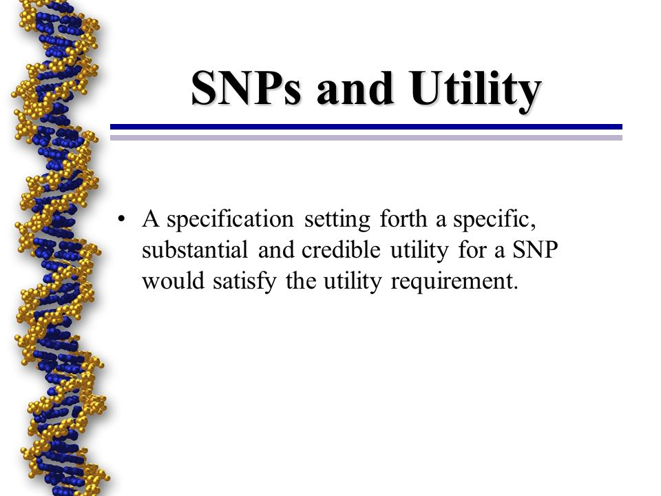 SNPs and Utility A specification setting forth a specific, substantial and credible utility for a SNP would satisfy the utility requirement.