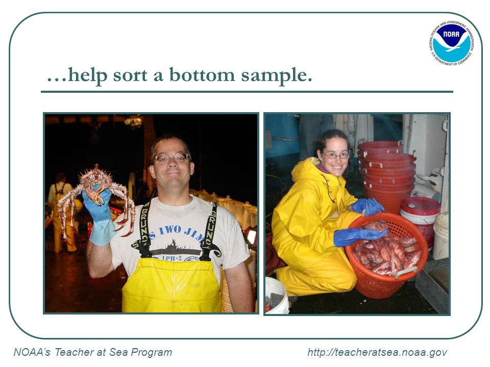 NOAA's Teacher at Sea Program   …help sort a bottom sample.
