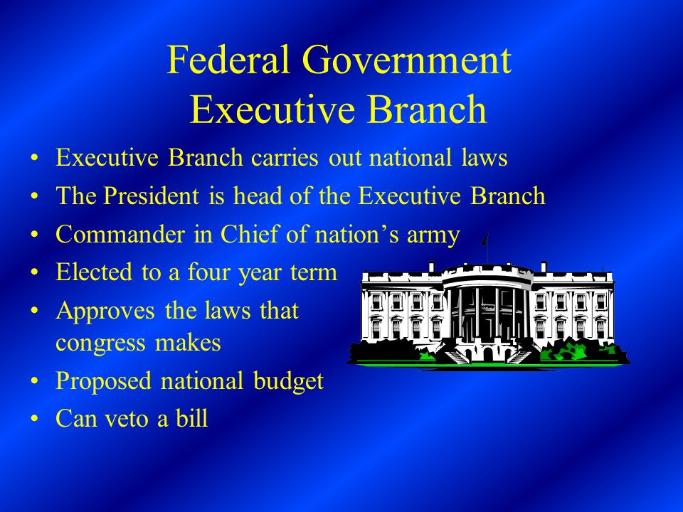 Federal Government Executive Branch Executive Branch carries out national laws The President is head of the Executive Branch Commander in Chief of nation's army Elected to a four year term Approves the laws that congress makes Proposed national budget Can veto a bill