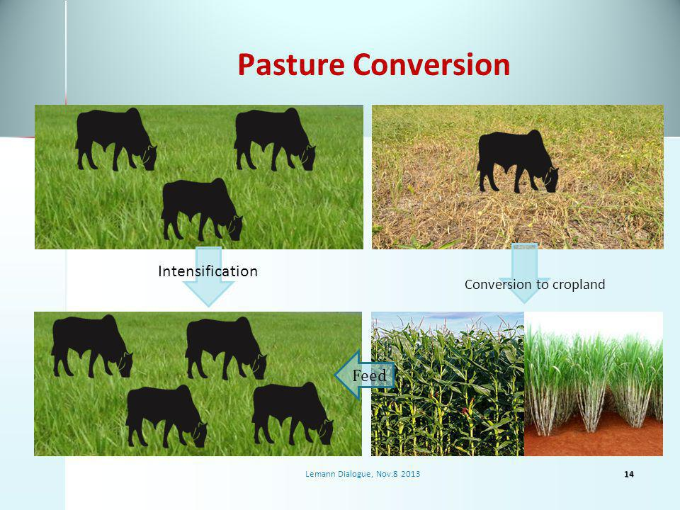 Pasture Conversion Intensification Feed Conversion to cropland 14Lemann Dialogue, Nov