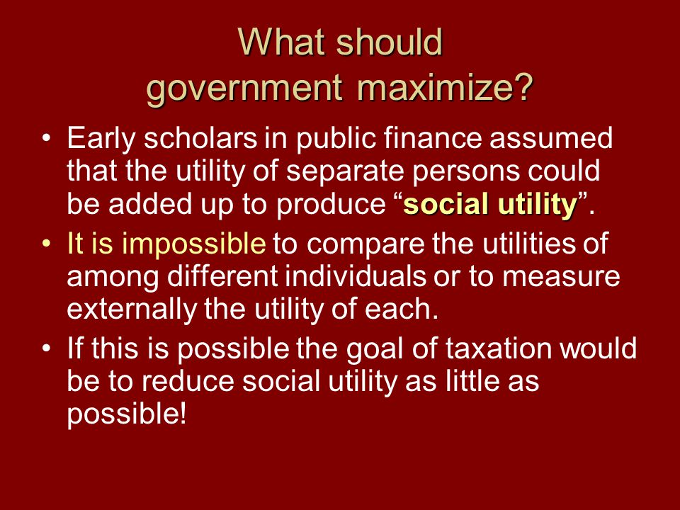 What should government maximize.