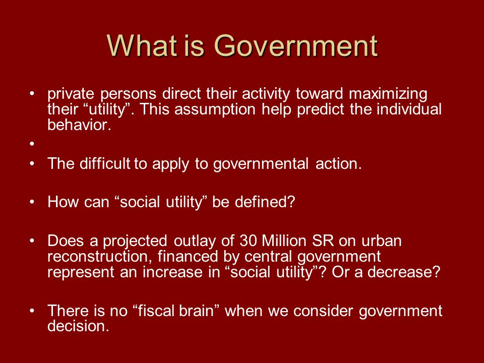 What is Government private persons direct their activity toward maximizing their utility .