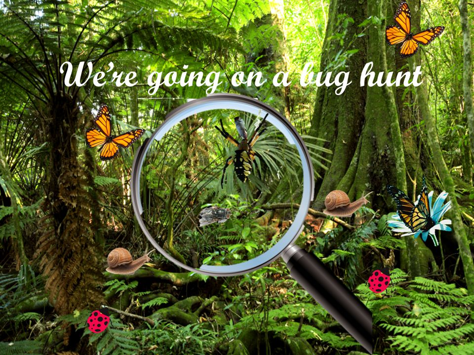 We're going on a bug hunt! We're going to catch some big ones. What a sunny day! Are you ready? OK!