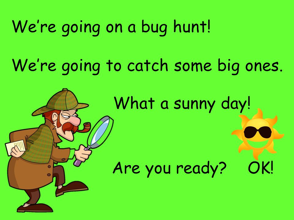 We're going on a bug hunt! We're going to catch some big ones. What a sunny day! Are you ready OK!