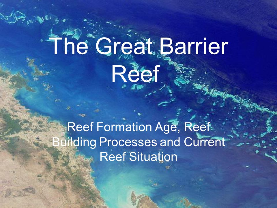 The Great Barrier Reef Reef Formation Age, Reef Building Processes and Current Reef Situation