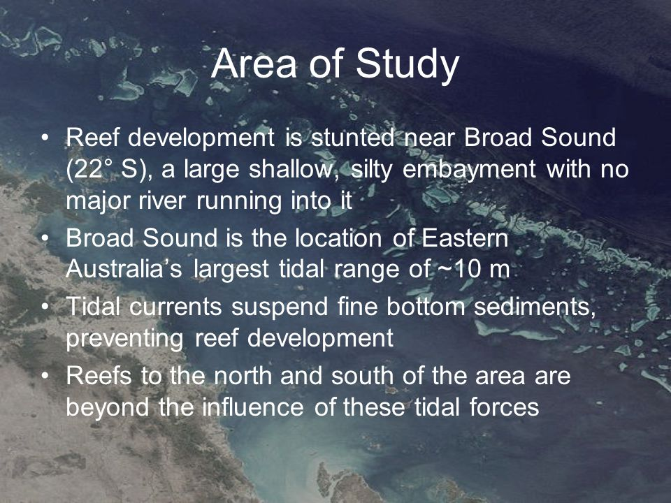 Area of Study Reef development is stunted near Broad Sound (22° S), a large shallow, silty embayment with no major river running into it Broad Sound is the location of Eastern Australia's largest tidal range of ~10 m Tidal currents suspend fine bottom sediments, preventing reef development Reefs to the north and south of the area are beyond the influence of these tidal forces
