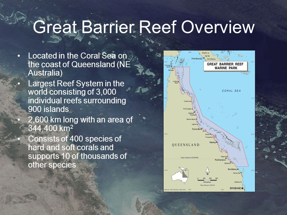 Outline Formation Age –Deep core estimate –Cause of formation Building Processes –Formation of Fringe Reefs –Morphologies and Growth Rates of the Great Barrier Reef Current Reef –Study to determine relationships between coral communities and reef building –Causes of deterioration