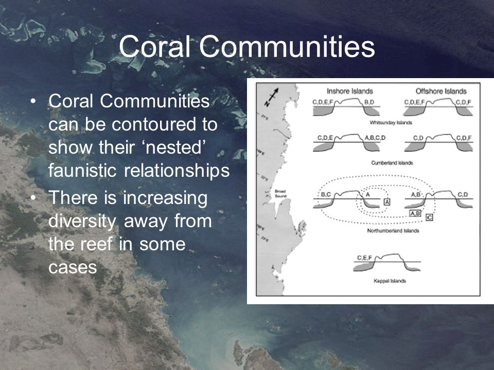 Coral Communities Coral Communities can be contoured to show their 'nested' faunistic relationships There is increasing diversity away from the reef in some cases