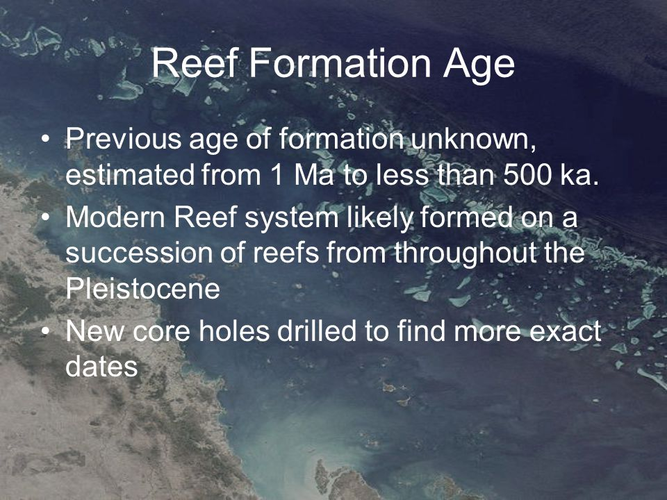 Discussion There is clear evidence of a link between coral community structure and degree of reef development Broad Sound area is sparsely developed and consists of encrusting and foliaceous growth forms of coral More developed areas tends to have large massive and branching coral colonys.