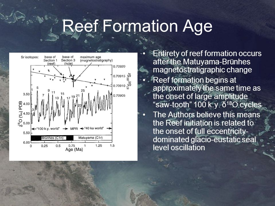 Reef Formation Age Entirety of reef formation occurs after the Matuyama-Brünhes magnetostratigraphic change Reef formation begins at approximately the same time as the onset of large amplitude saw-tooth 100 k.y.