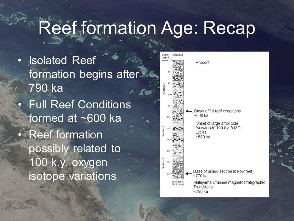 Results Regions 1, 2 and 4 had corals to depths of 12 m, and region 3 had corals only to 4 m, which corresponds to the increased turbidity and shallowness of region 3 Offshore reefs tended to exhibit more species richness, higher colony density, higher soft coral cover and lower macrophyte cover