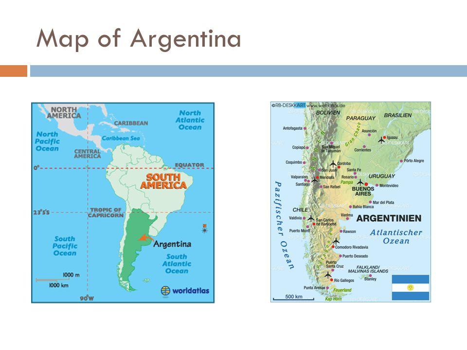 EFFECTS OF THE GREAT DEPRESSION & STRATEGIES TO OVERCOME THE GREAT DEPRESSION Argentina