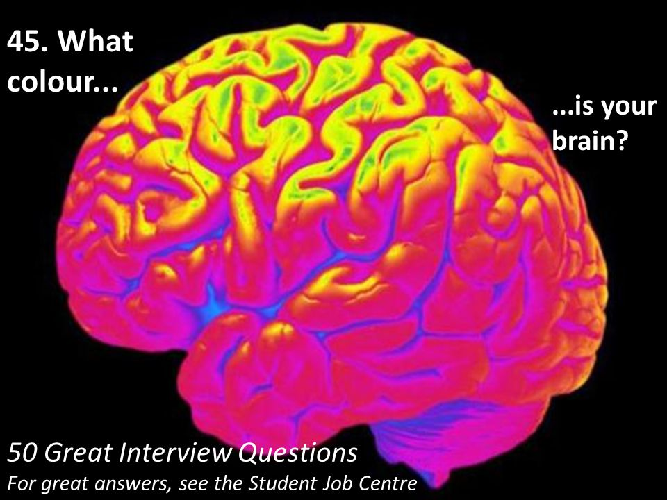 50 Great Interview Questions For great answers, see the Student Job Centre 45. What colour......is your brain?