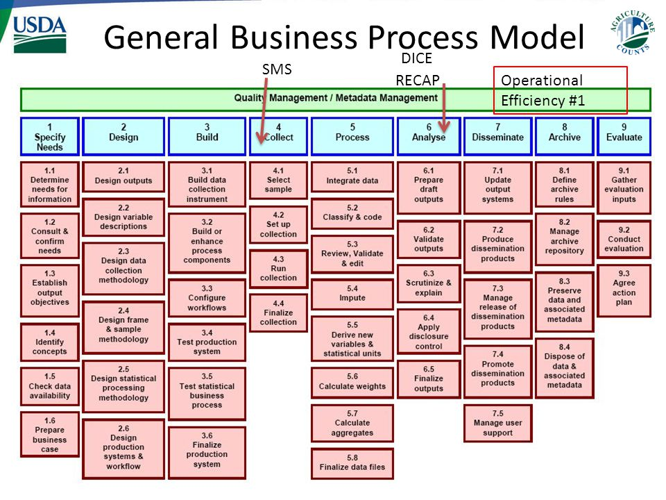 General Business Process Model SMS RECAP DICE Operational Efficiency #1