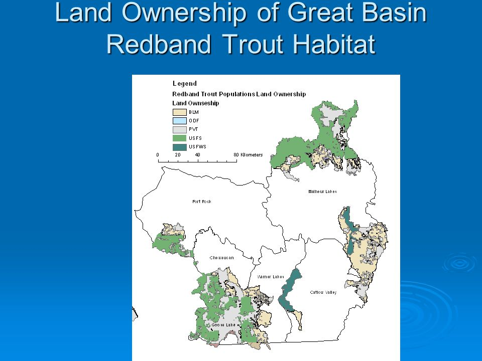 Land Ownership of Great Basin Redband Trout Habitat