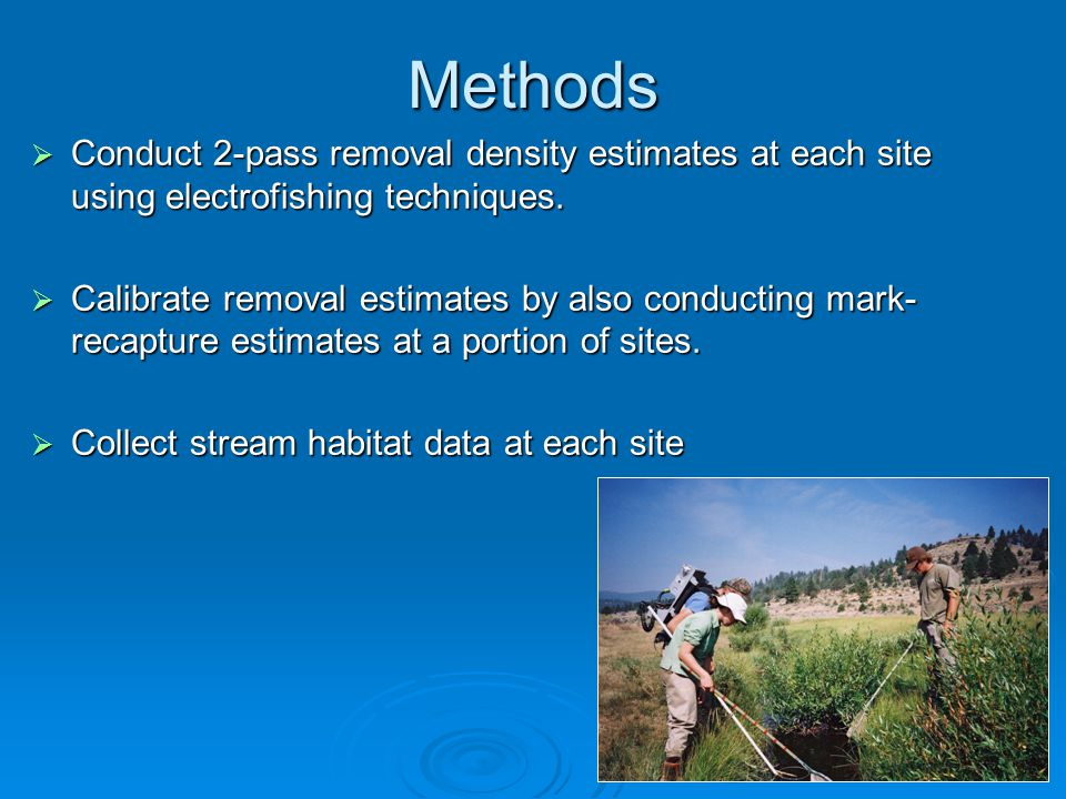 Methods  Conduct 2-pass removal density estimates at each site using electrofishing techniques.