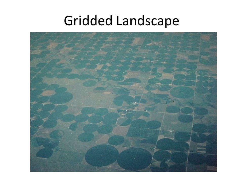 Gridded Landscape