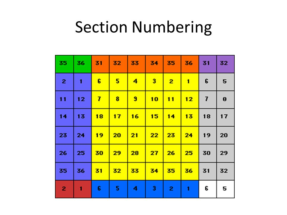 Section Numbering