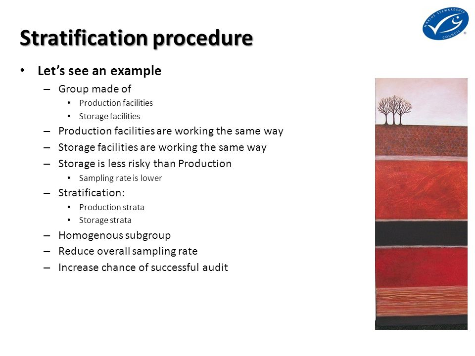 Stratification procedure Let's see an example – Group made of Production facilities Storage facilities – Production facilities are working the same way – Storage facilities are working the same way – Storage is less risky than Production Sampling rate is lower – Stratification: Production strata Storage strata – Homogenous subgroup – Reduce overall sampling rate – Increase chance of successful audit