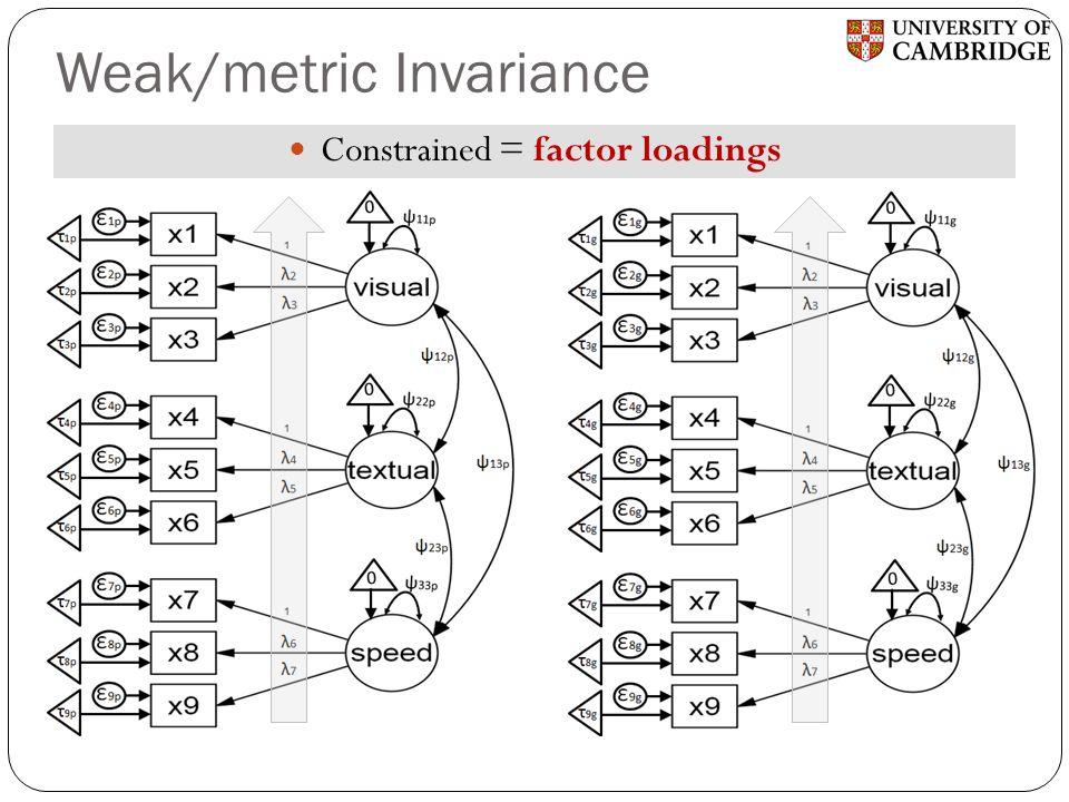 Weak/metric Invariance Constrained = factor loadings