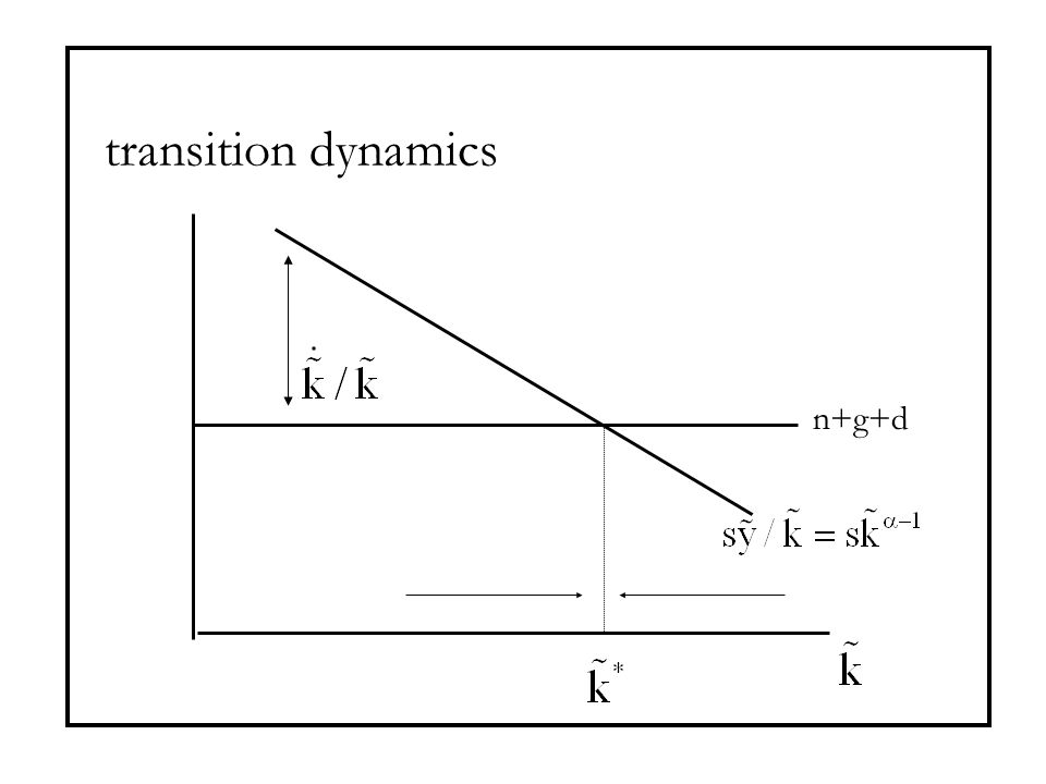transition dynamics n+g+d