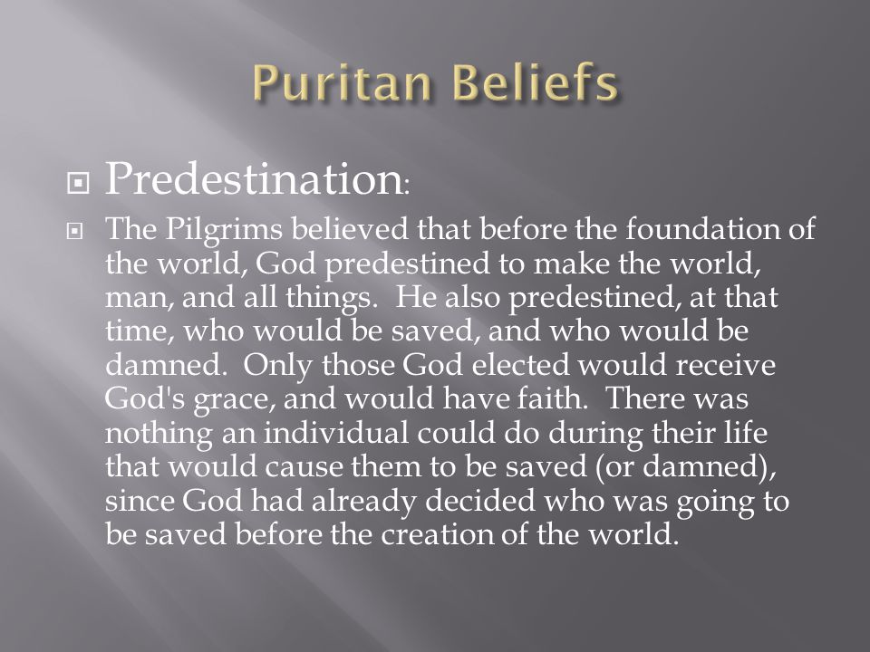  Predestination :  The Pilgrims believed that before the foundation of the world, God predestined to make the world, man, and all things.