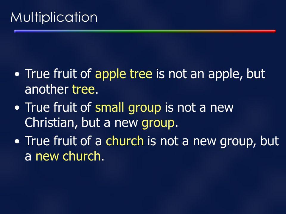 Multiplication True fruit of apple tree is not an apple, but another tree. True fruit of small group is not a new Christian, but a new group. True fru