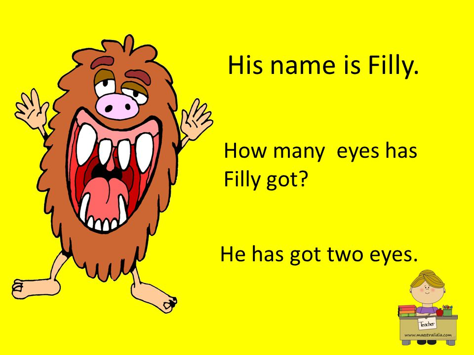 His name is Filly. How many eyes has Filly got He has got two eyes.
