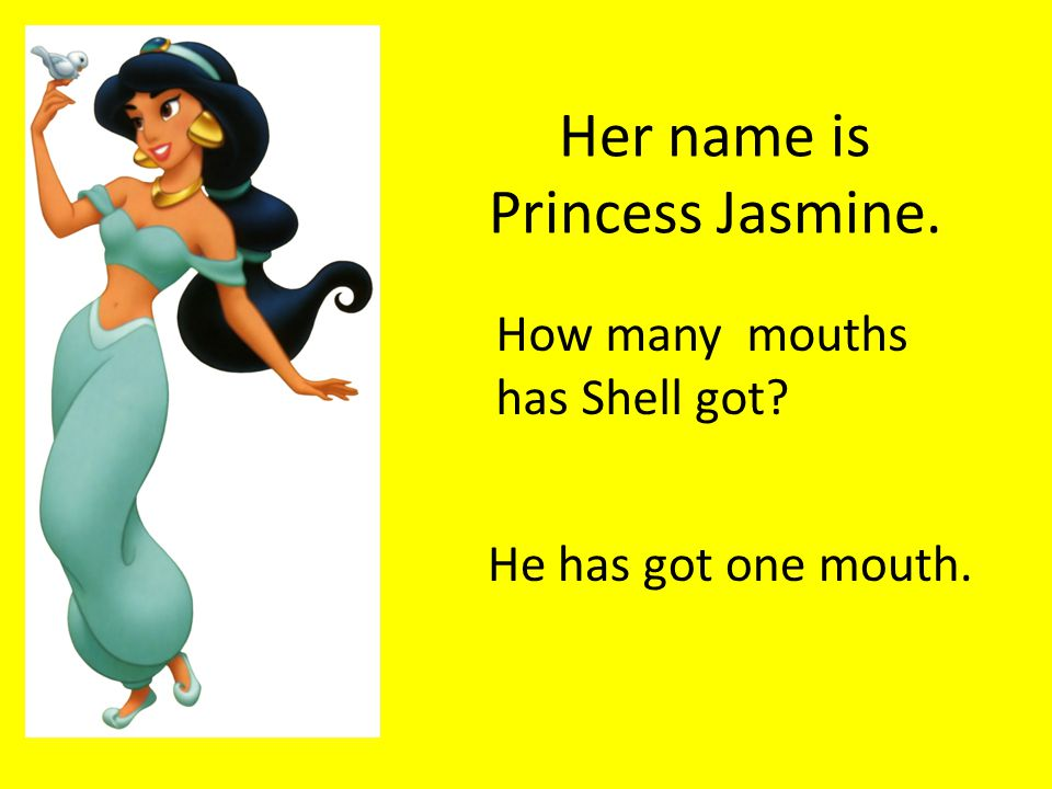 Her name is Princess Jasmine. How many mouths has Shell got He has got one mouth.