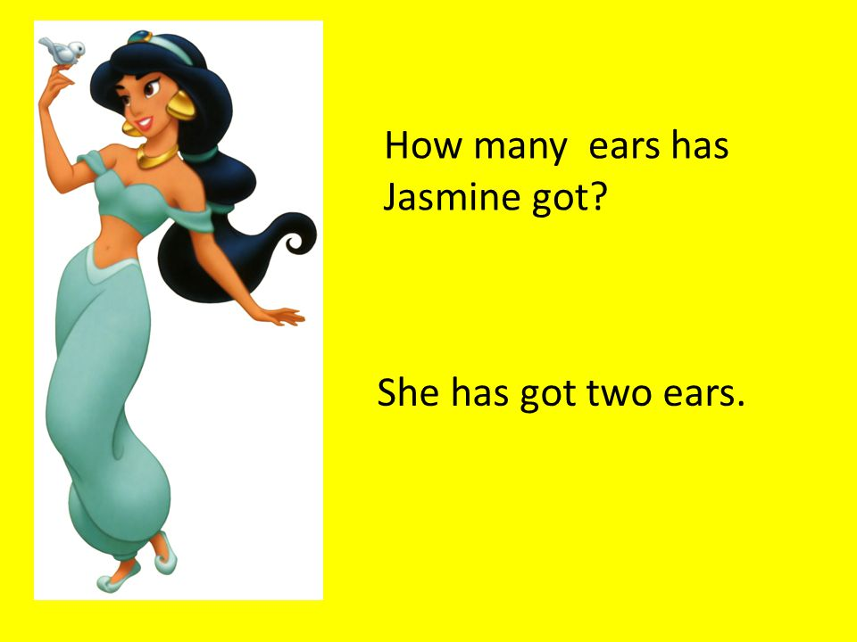 How many ears has Jasmine got She has got two ears.