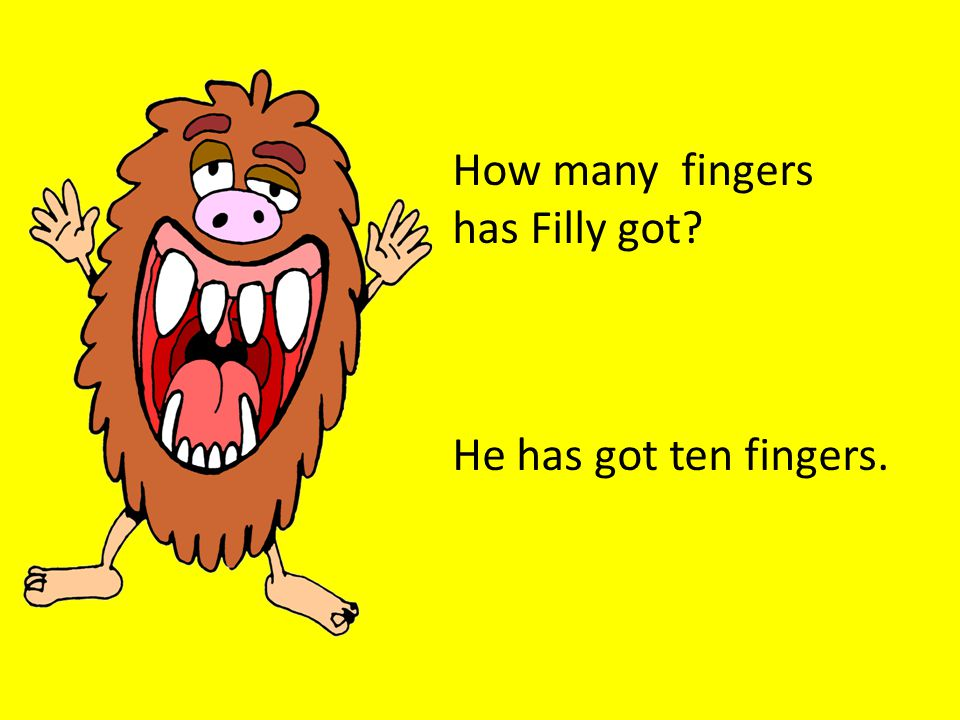 How many fingers has Filly got He has got ten fingers.