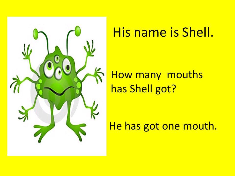 How many eyes has Shell got? He has got four eyes.
