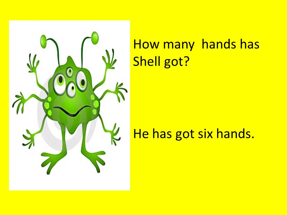 How many hands has Shell got He has got six hands.