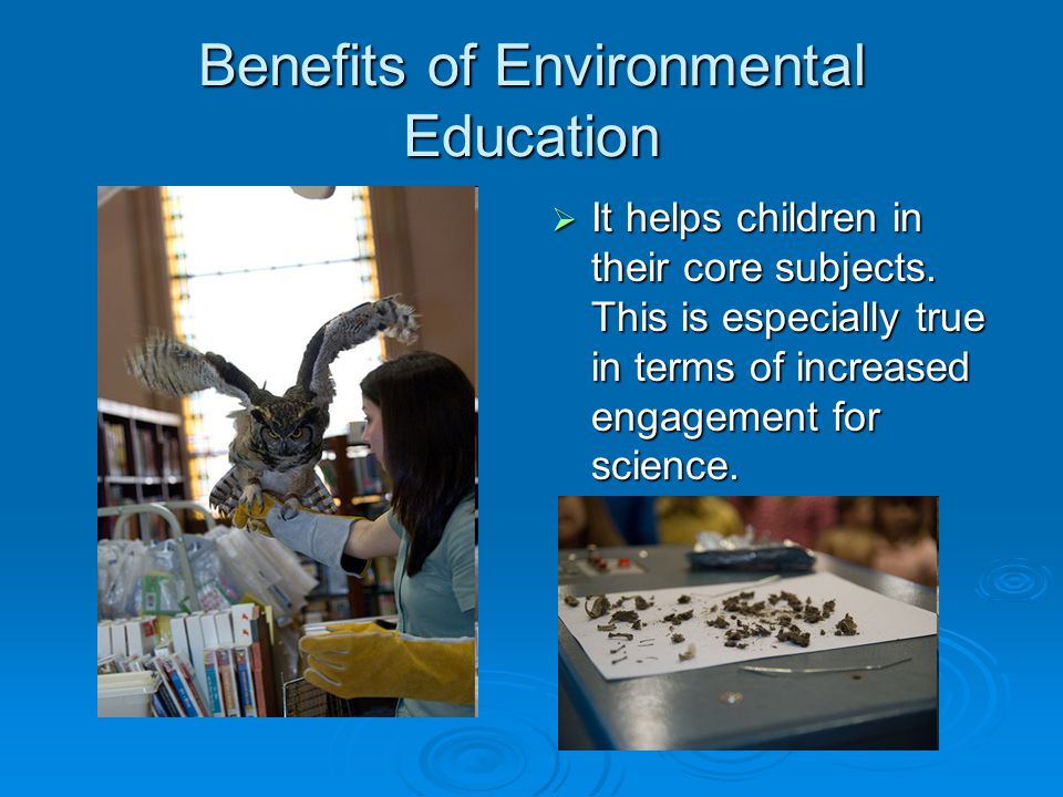 Benefits of Environmental Education  It helps children in their core subjects.