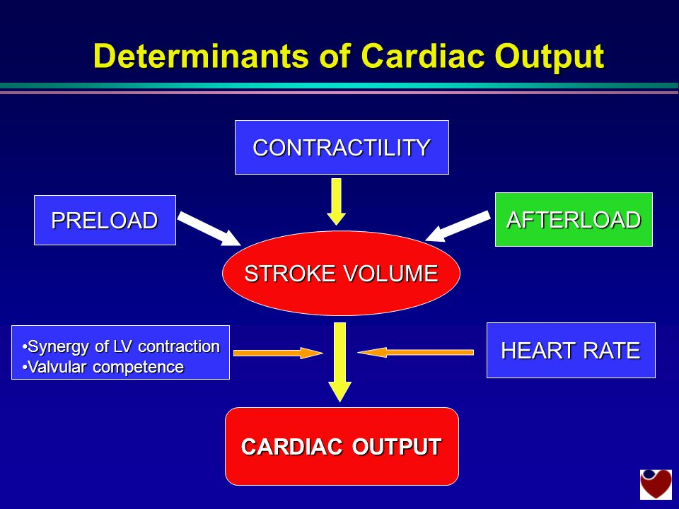 Determinants of Cardiac Output STROKE VOLUME CONTRACTILITY PRELOAD HEART RATE CARDIAC OUTPUT AFTERLOAD Synergy of LV contractionSynergy of LV contraction Valvular competenceValvular competence