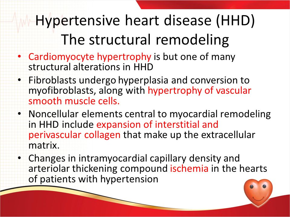A common end point of many cellular and non cellular pathologic processes in HHD is myocardial fibrosis.