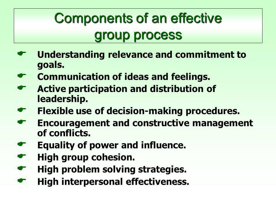 Components of an effective group process   Understanding relevance and commitment to goals.