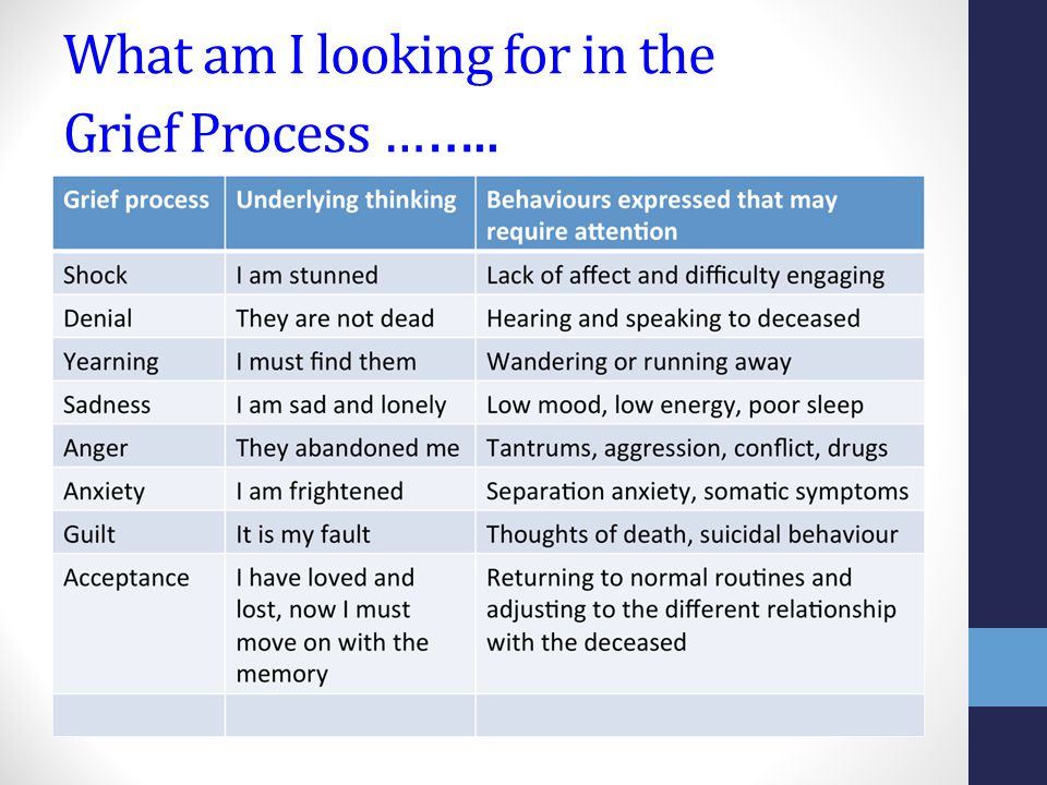 What am I looking for in the Grief Process … …..