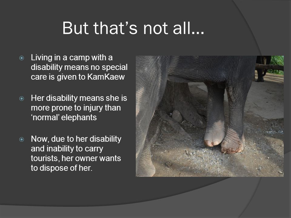 But that's not all…  Living in a camp with a disability means no special care is given to KamKaew  Her disability means she is more prone to injury