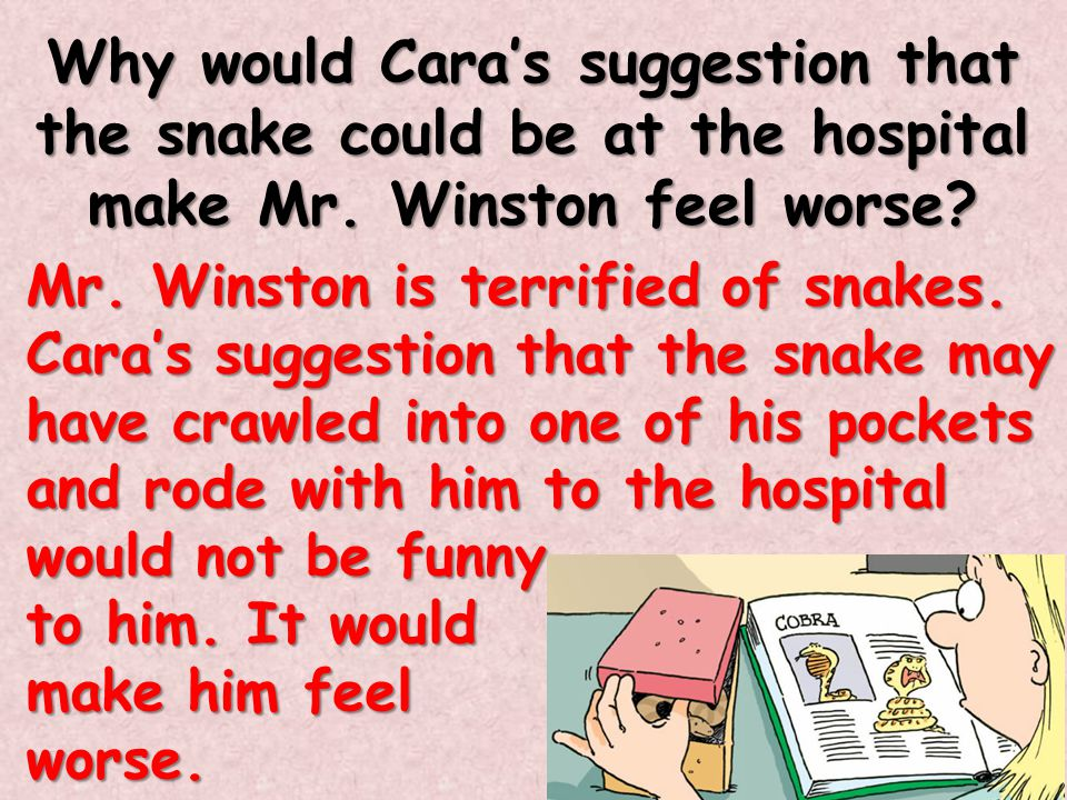 Why would Cara's suggestion that the snake could be at the hospital make Mr. Winston feel worse? Mr. Winston is terrified of snakes. Cara's suggestion