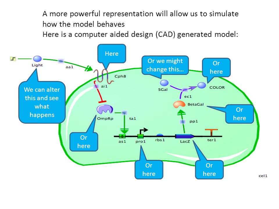 We can alter this and see what happens Here Or here Or we might change this… A more powerful representation will allow us to simulate how the model behaves Here is a computer aided design (CAD) generated model: