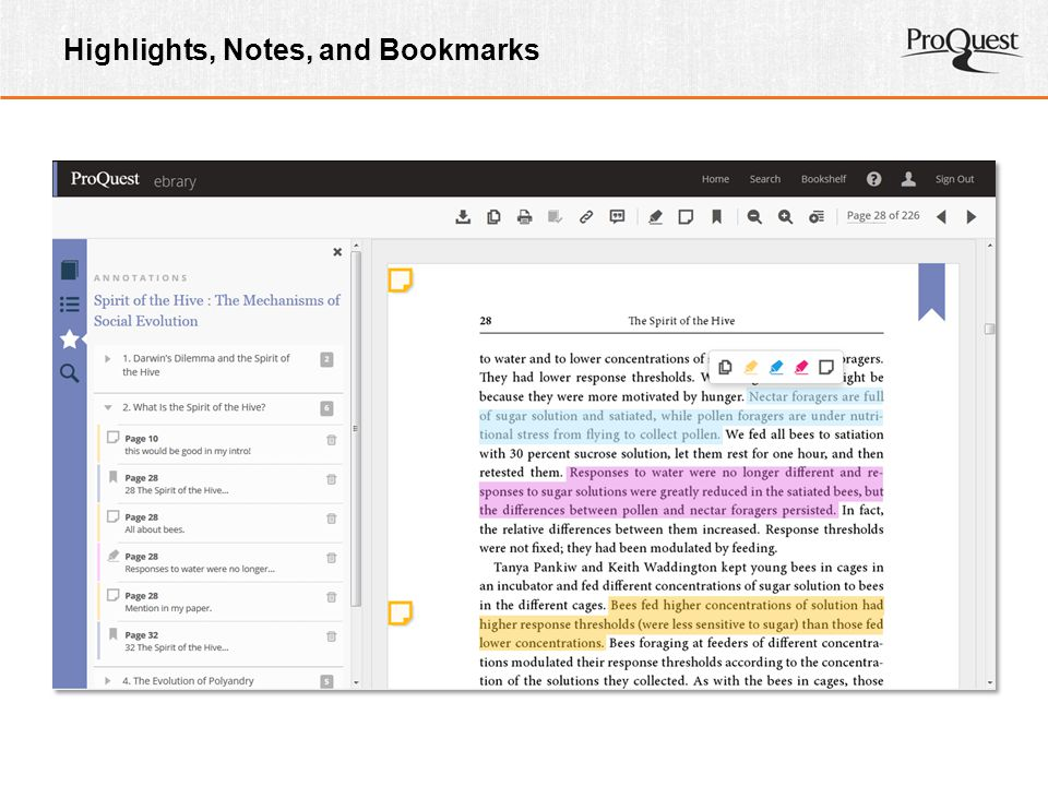Highlights, Notes, and Bookmarks