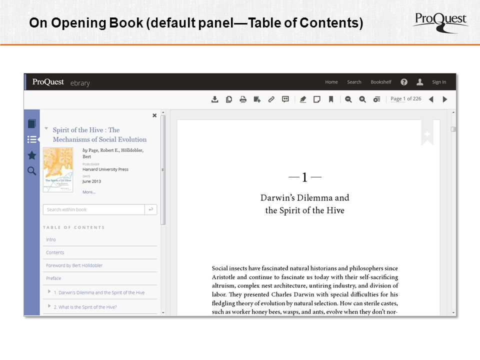 On Opening Book (default panel—Table of Contents)