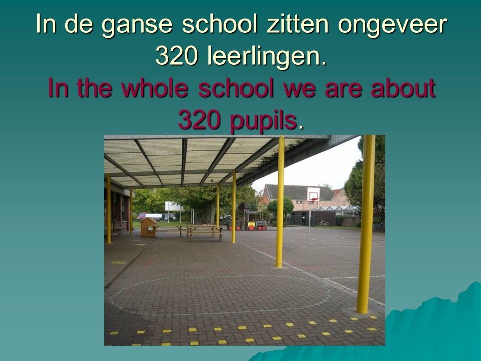 In de ganse school zitten ongeveer 320 leerlingen. In the whole school we are about 320 pupils.