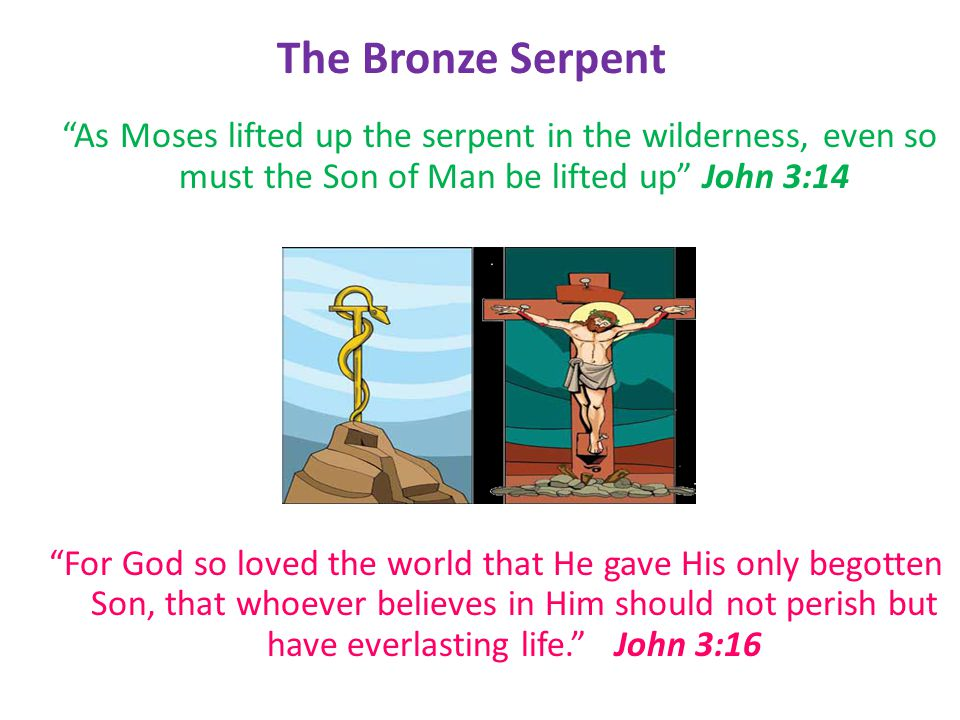 As Moses lifted up the serpent in the wilderness, even so must the Son of Man be lifted up John 3:14 For God so loved the world that He gave His only begotten Son, that whoever believes in Him should not perish but have everlasting life. John 3:16 The Bronze Serpent