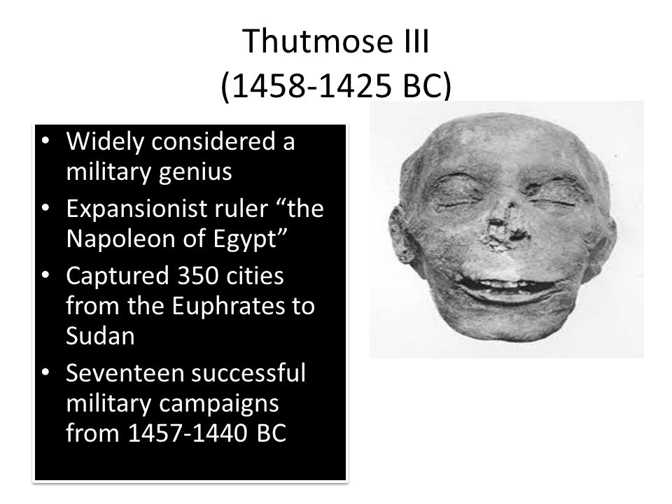 Thutmose III ( BC) Widely considered a military genius Expansionist ruler the Napoleon of Egypt Captured 350 cities from the Euphrates to Sudan Seventeen successful military campaigns from BC Widely considered a military genius Expansionist ruler the Napoleon of Egypt Captured 350 cities from the Euphrates to Sudan Seventeen successful military campaigns from BC